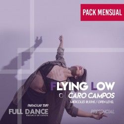 FLYING LOW - Caro Campos - ONLINE ZOOM MIERCOLES 18:30 HS -  PACK MAYO